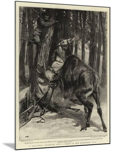 A Squatter's Adventure with a Moose in New Hampshire, USA-John Charlton-Mounted Giclee Print