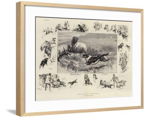 Sheep-Dog Trials in Westmoreland-John Charlton-Framed Art Print