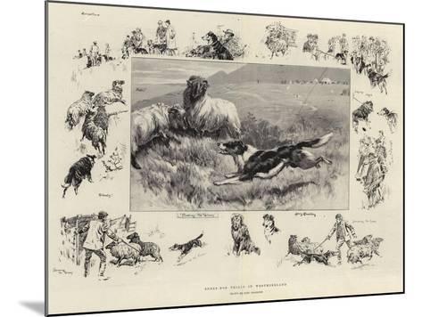 Sheep-Dog Trials in Westmoreland-John Charlton-Mounted Giclee Print