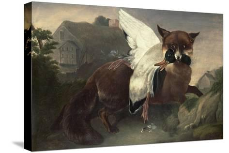Fox and Goose, C.1835-John James Audubon-Stretched Canvas Print