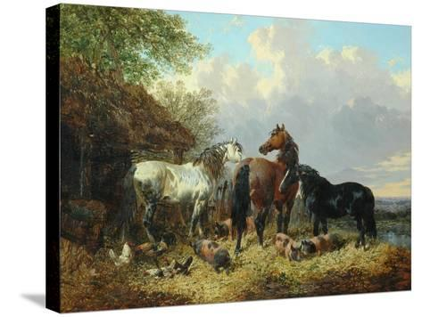 Three Horses with Pigs-John Frederick Herring Jnr-Stretched Canvas Print