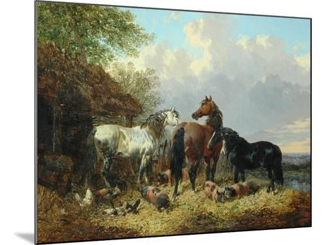Three Horses with Pigs-John Frederick Herring Jnr-Mounted Giclee Print