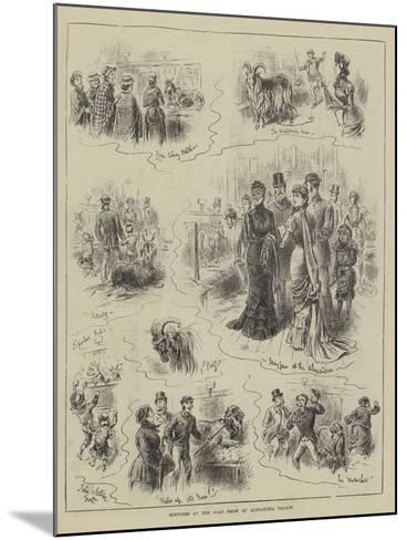Sketches at the Goat Show at Alexandra Palace-John Jellicoe-Mounted Giclee Print