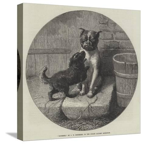 Bothered-John William Bottomley-Stretched Canvas Print