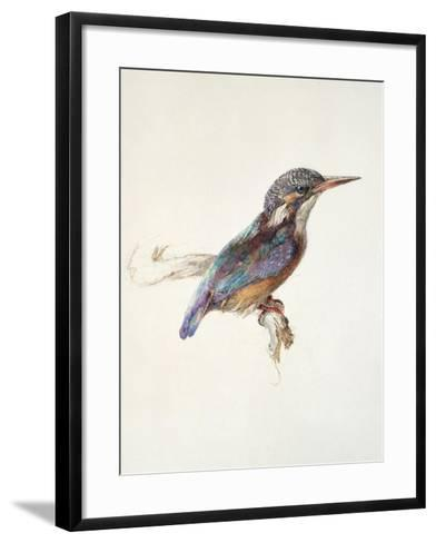 Study of a Kingfisher, with Dominant Reference to Colour, Probably October 1871-John Ruskin-Framed Art Print