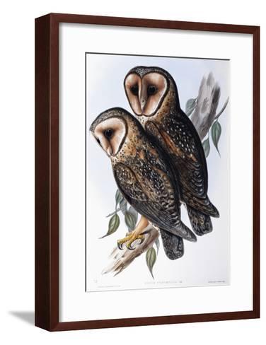 Australian Masked-Owl (Strix Personata)-John Gould-Framed Art Print