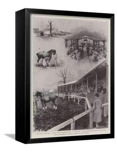 Sale of Shire Horses at the Prince of Wales's Stud-Farm, Wolferton-Joseph Holland Tringham-Framed Canvas Print