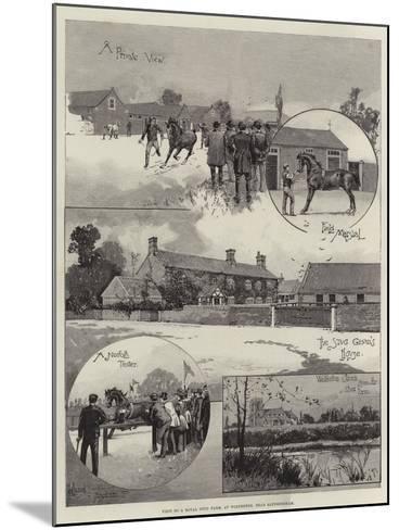 Visit to a Royal Stud Farm, at Wolferton, Near Sandringham-Joseph Holland Tringham-Mounted Giclee Print
