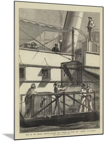 Some of the Prince's Presents, Shipping Wild Animals on Board the Osborne at Calcutta-Joseph Nash-Mounted Giclee Print
