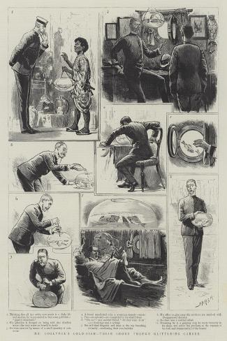 Mr Goslynge's Gold-Fish, their Short Through Glittering Career-Joseph Nash-Stretched Canvas Print
