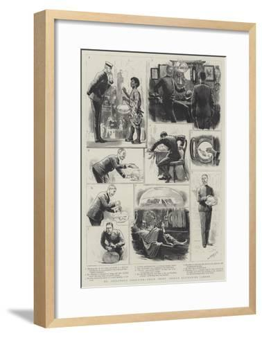 Mr Goslynge's Gold-Fish, their Short Through Glittering Career-Joseph Nash-Framed Art Print