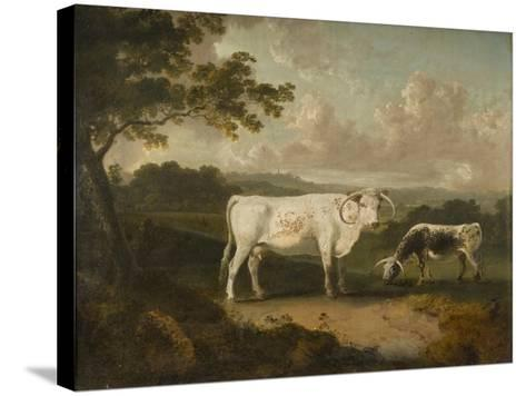Kenwood, Lord Mansfield's Pedigree Cattle, 1797-Julius Caesar Ibbetson-Stretched Canvas Print