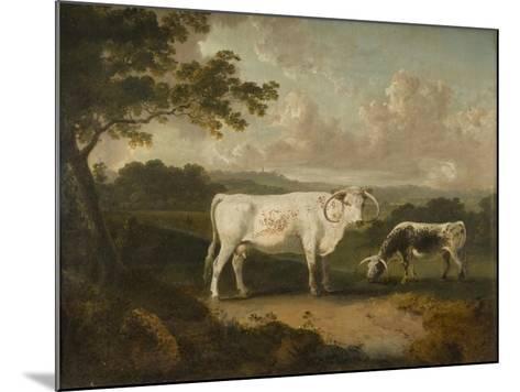 Kenwood, Lord Mansfield's Pedigree Cattle, 1797-Julius Caesar Ibbetson-Mounted Giclee Print