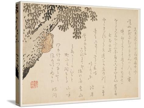 Shell of a Cicada, C.1848-53- Kangyoku-Stretched Canvas Print