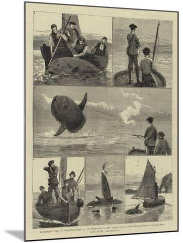 Sun-Fish Shooting-Joseph Nash-Mounted Giclee Print
