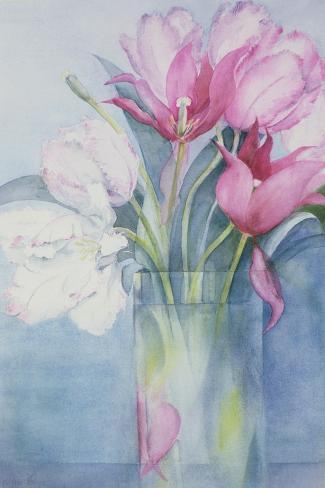 Pink Parrot Tulips and Marlette-Karen Armitage-Stretched Canvas Print