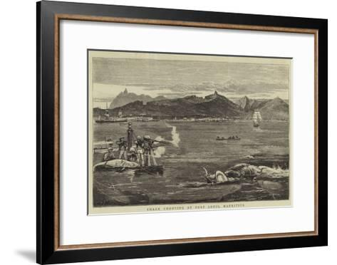 Shark Shooting at Port Louis, Mauritius-Joseph Nash-Framed Art Print