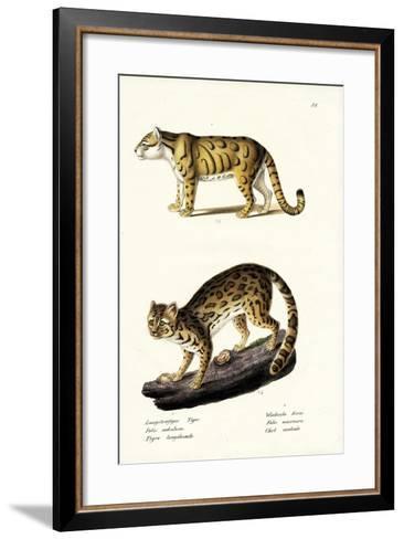 Clouded Leopard, 1824-Karl Joseph Brodtmann-Framed Art Print