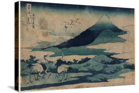 Soshu Umezawa Zai-Katsushika Hokusai-Stretched Canvas Print