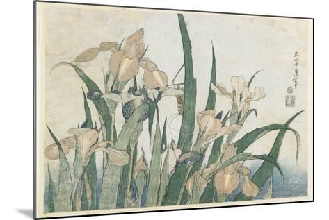 Iris Flowers and Grasshopper, C.1830-31-Katsushika Hokusai-Mounted Giclee Print