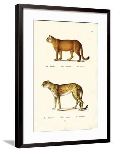 Cougar, 1824-Karl Joseph Brodtmann-Framed Art Print