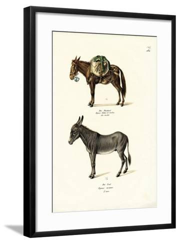 Donkey, 1824-Karl Joseph Brodtmann-Framed Art Print