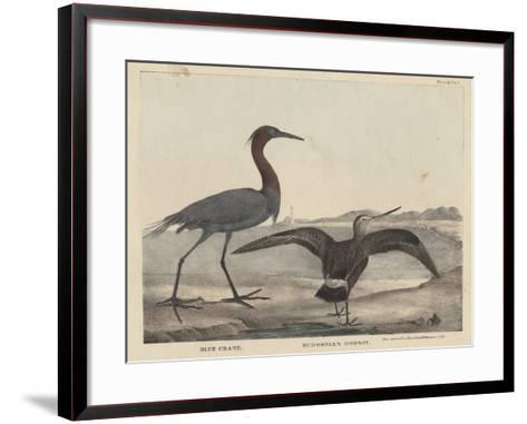 Blue Crane-Mannevillette Elihu Dearing Brown-Framed Art Print