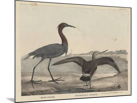 Blue Crane-Mannevillette Elihu Dearing Brown-Mounted Giclee Print