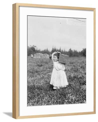 Eight Year Old Jennie Camillo from Philadelphia Picking Cranberries at Theodore Budd's Bog-Lewis Wickes Hine-Framed Art Print