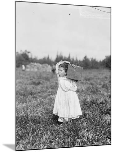 Eight Year Old Jennie Camillo from Philadelphia Picking Cranberries at Theodore Budd's Bog-Lewis Wickes Hine-Mounted Photographic Print