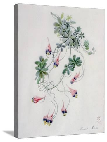 Flower Pieces- Marie-Anne-Stretched Canvas Print