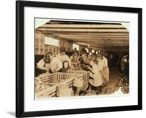 Rosy Aged 8 Works a 14 Hour Day as an Oyster Shucker at Dunbar Cannery, Louisiana, 1911-Lewis Wickes Hine-Framed Art Print