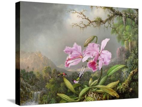 Study of an Orchid, 1872-Martin Johnson Heade-Stretched Canvas Print