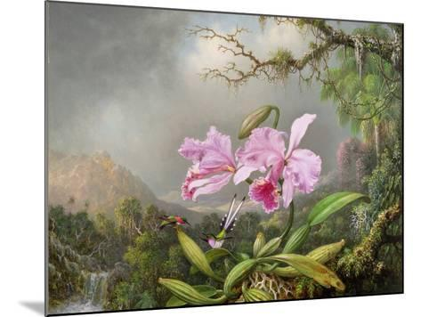 Study of an Orchid, 1872-Martin Johnson Heade-Mounted Giclee Print