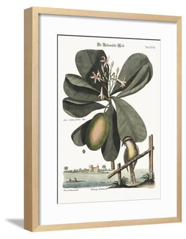 The Bahama Titmouse, 1749-73-Mark Catesby-Framed Art Print