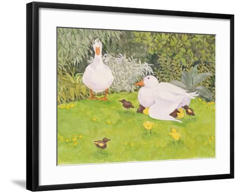 Ducks and Ducklings-Linda Benton-Framed Art Print