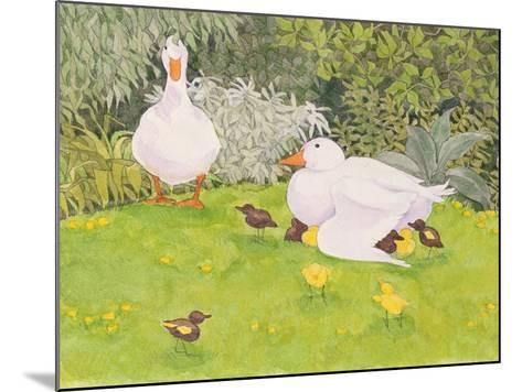 Ducks and Ducklings-Linda Benton-Mounted Giclee Print