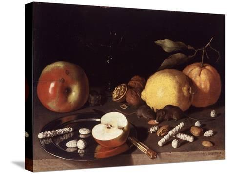 Still Life with Mice, 1619-Lodewik Susi-Stretched Canvas Print