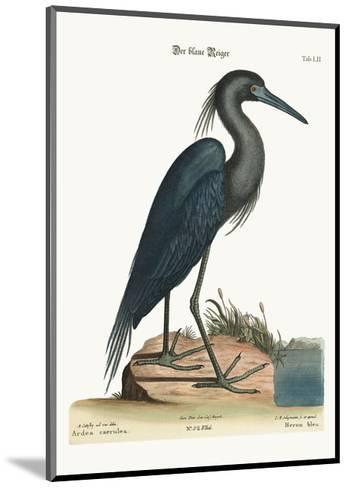 The Blue Heron, 1749-73-Mark Catesby-Mounted Giclee Print