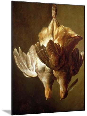 Still Life of Two Partridges-Matthew Bloem-Mounted Giclee Print