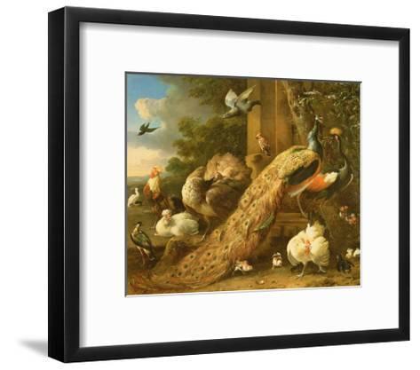 Peacock, Parakeet, Pelican, Crane and Poultry-Melchior de Hondecoeter-Framed Art Print