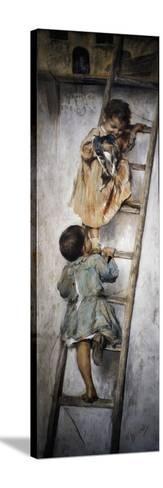 Nest-Nicholas Biondi-Stretched Canvas Print