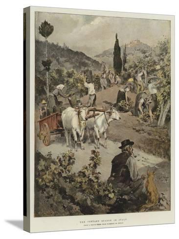 The Vintage Season in Italy-Oswaldo Tofani-Stretched Canvas Print