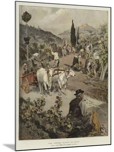 The Vintage Season in Italy-Oswaldo Tofani-Mounted Giclee Print
