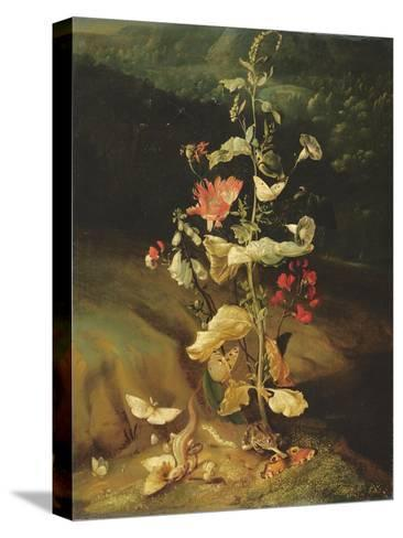 Still Life with Flowers-Otto Marseus Van Schrieck-Stretched Canvas Print