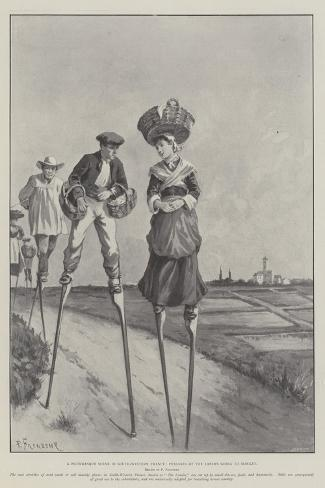 A Picturesque Scene in South-Western France, Peasants of the Landes Going to Market-Paul Frenzeny-Stretched Canvas Print