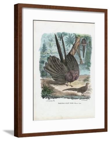 Argus Pheasant, 1863-79-Raimundo Petraroja-Framed Art Print