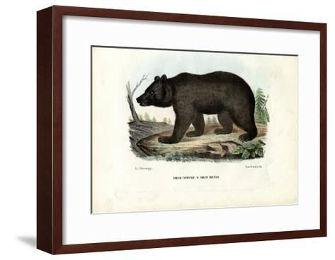 Brown Bear, 1863-79-Raimundo Petraroja-Framed Art Print