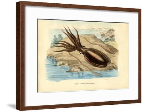 Cuttlefish, 1863-79-Raimundo Petraroja-Framed Art Print