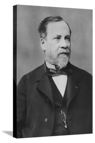 Portrait of Louis Pasteur-Pierre Petit-Stretched Canvas Print